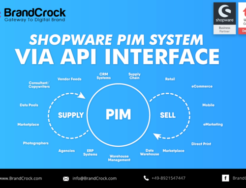 Shopware to a PIM system via API interface
